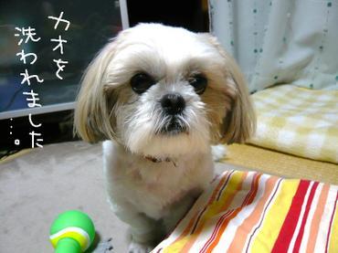 Kaowo