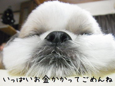 R0018049_2